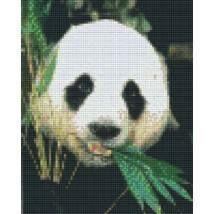 Pixel készlet (4 alaplapos) - Panda